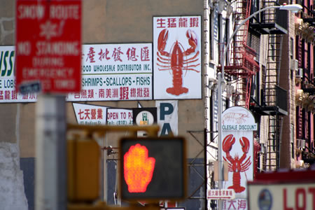 Lobster District New York